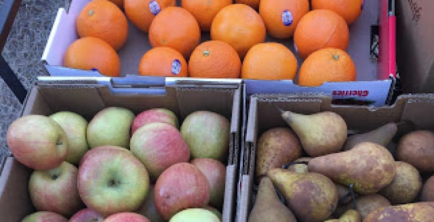 oranges, apples and pears donated by Ungraded Produce.